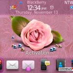 Tema Pink Rose 4.6