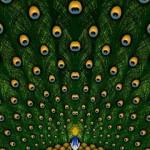 Tema Peacock 5th