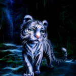 Tema Little tiger