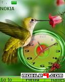 Tema bird clock-Animal