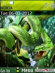 Tema serpiente verde-Animal