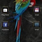 tema Parrot